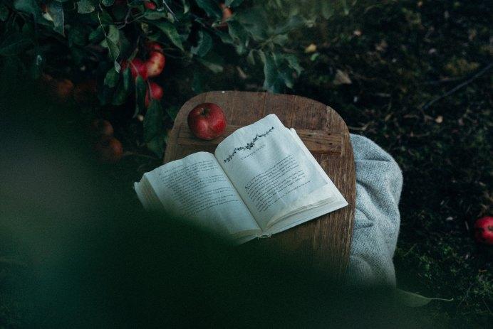 Как получить максимум пользы от чтения книг
